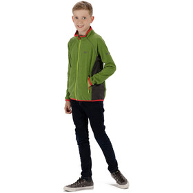 Regatta Pira Fleece Jacket Kids Lime Green/Seal Grey